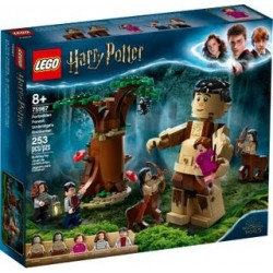 LEGO Harry Potter 75967 Der...